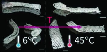 Struktura 3D, która składa się w rurkę w 6°C i rozwija w 45°C